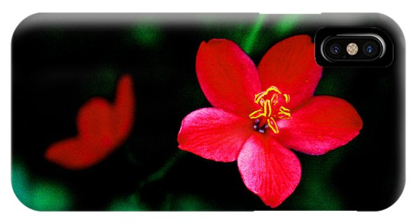 Red Petaled Dream IPhone Case