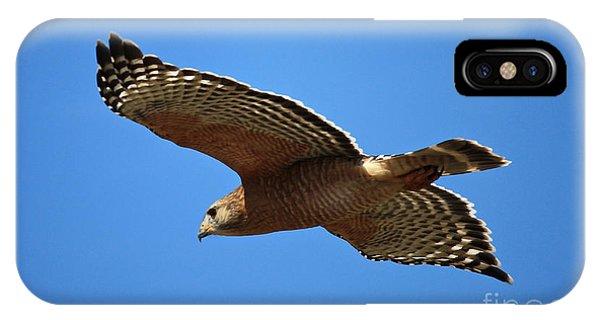 Red Shouldered Hawk In Flight IPhone Case