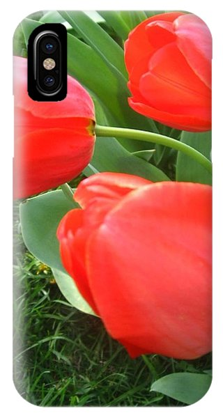 Red Spring Tulips IPhone Case