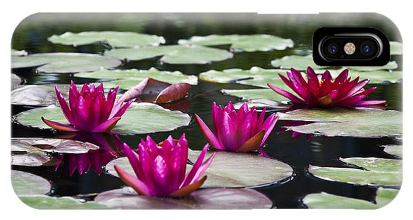 Lillie iPhone Case - Red Water Lillies by Bill Cannon