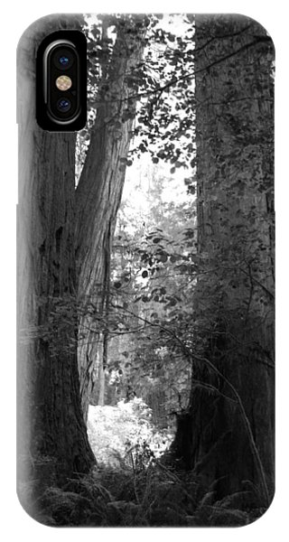 Redwood Pair IPhone Case