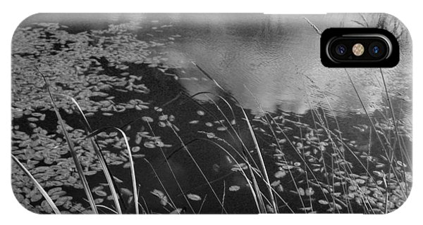 Reflections In The Pond IPhone Case