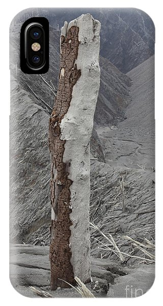 Pyroclastic Flow iPhone Case - Remains Of Tree With Bark Stripped by Richard Roscoe