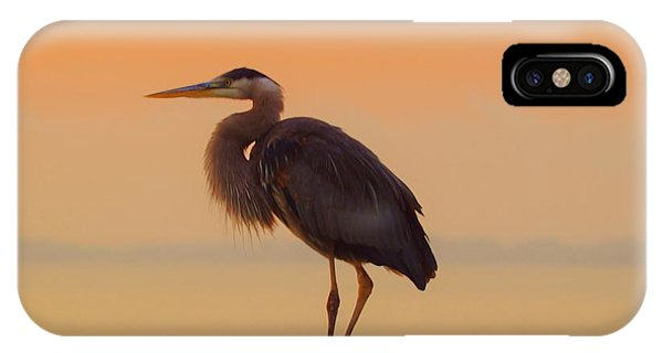 Resting Heron IPhone Case