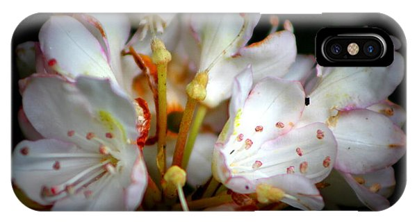 Rhododendron Explosion IPhone Case