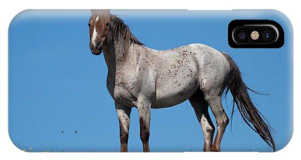 Ridgetop Mustang IPhone Case