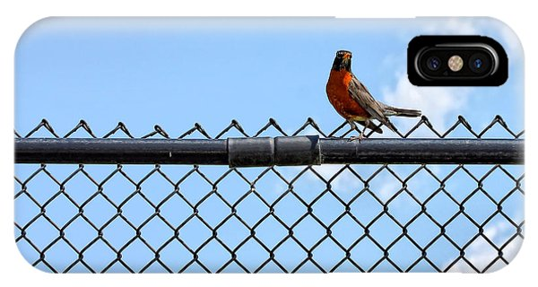 Robin Bird Sitting On A Fence IPhone Case
