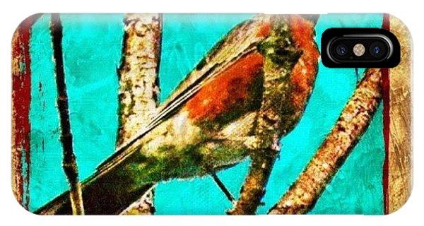 Edit iPhone Case - Robin Perch  by Mari Posa