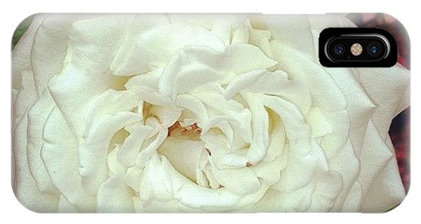 Florals iPhone Case - #rose by Melissa Wyatt