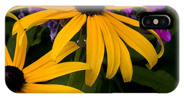 Rudbeckia Fulgida Phone Case by Michael Friedman