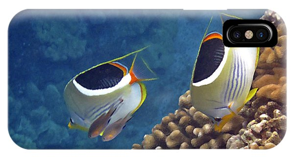 Saddleback Butterflyfish IPhone Case