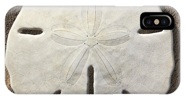 Sand iPhone Case - Sand Dollar by Mike McGlothlen