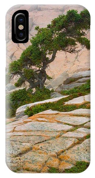 Schoodic Cliffs IPhone Case