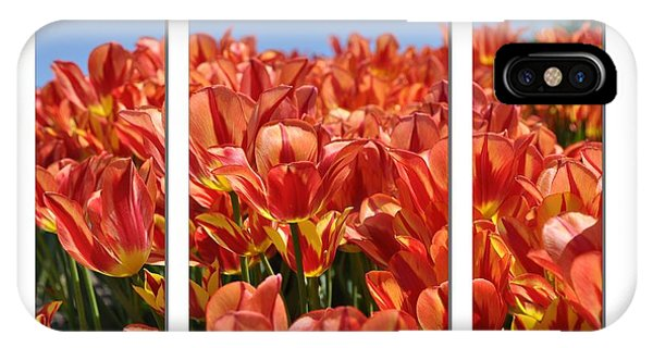 Sea Of Tulips IPhone Case