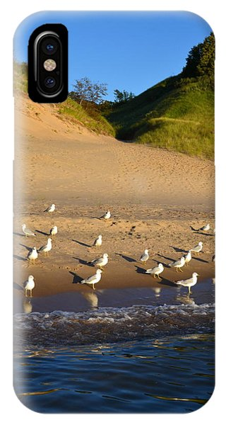 Seagulls At The Bowl IPhone Case