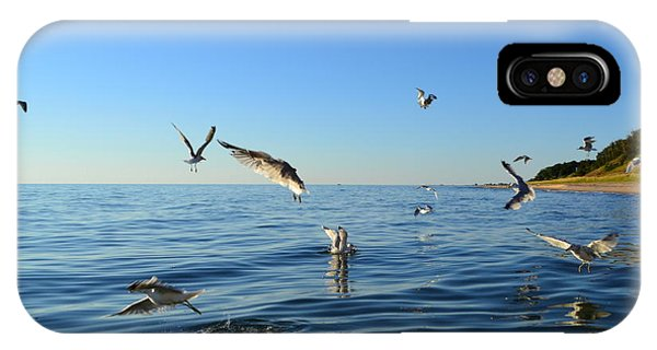 Seagulls Over Lake Michigan IPhone Case