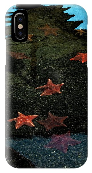Seastars IPhone Case