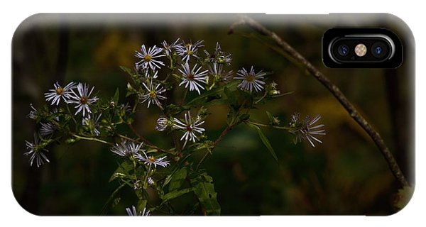 Fall Flowers iPhone Case - September Blues by Susan Capuano
