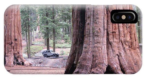 Sierra Nevada iPhone Case - Sequoia  Trees 2 by Naxart Studio