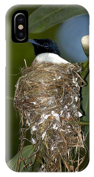 Seychelles Paradise Flycatcher Phone Case by Tony Camacho