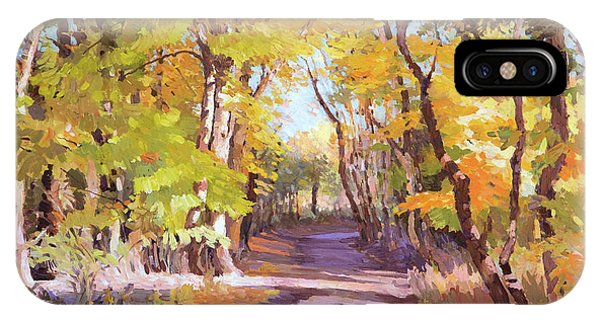 Shady Path At Fall In The Woods IPhone Case
