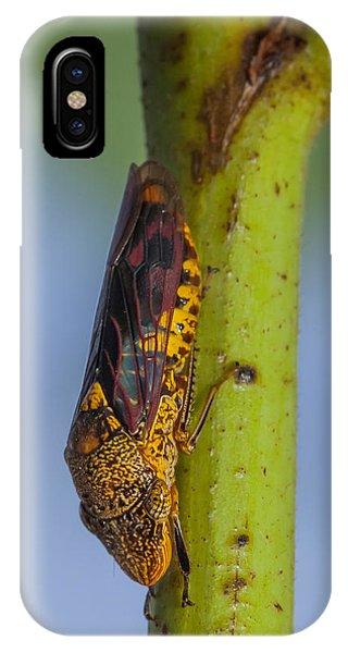 Sharpshooter Smoke Tree Phone Case by Craig Lapsley