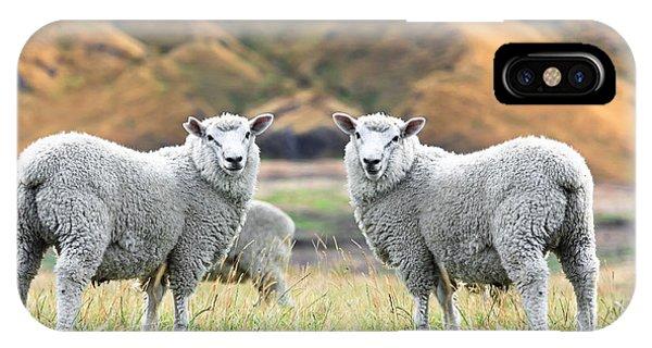 Sheep iPhone X / XS Case - Sheeps by MotHaiBaPhoto Prints