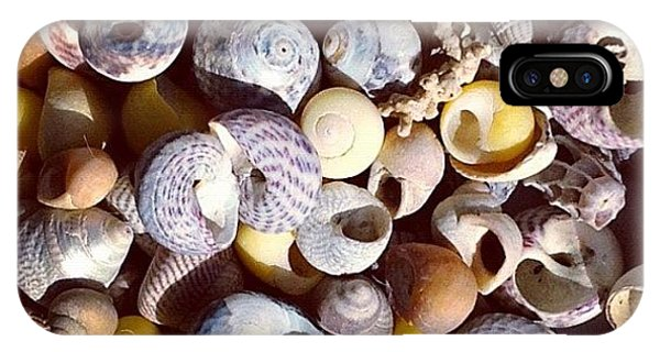 Shells From Brittany IPhone Case