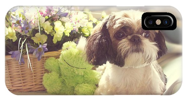 Shih Tzu Ginger IPhone Case
