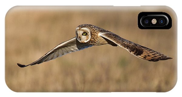 Short Eared Owl Hunting IPhone Case