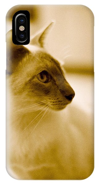 Siamese Feline IPhone Case