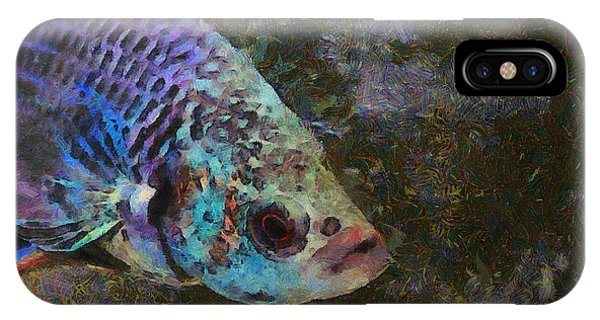 Siamese Fighting Fish IPhone Case