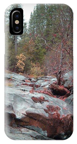 Sierra Nevada iPhone Case - Sierra Nevada Forest 1 by Naxart Studio