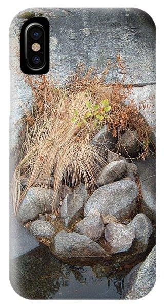 Sierra Nevada iPhone Case - Sierra Nevada Forest 2 by Naxart Studio
