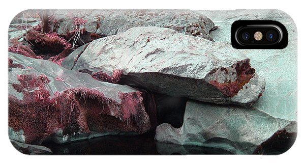 Sierra Nevada iPhone Case - Sierra Nevada Forest by Naxart Studio