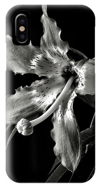 Silk Flower In Black And White IPhone Case