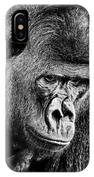 Silverback Gorilla IPhone Case