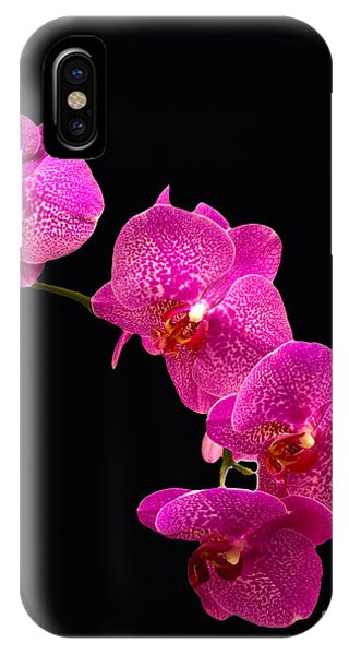 Simply Beautiful Purple Orchids IPhone Case