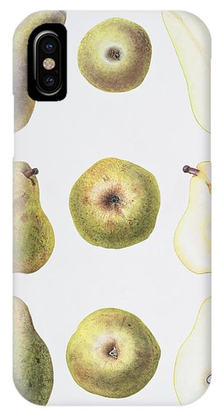 Organic Foods iPhone Case - Six Pears by Margaret Ann Eden