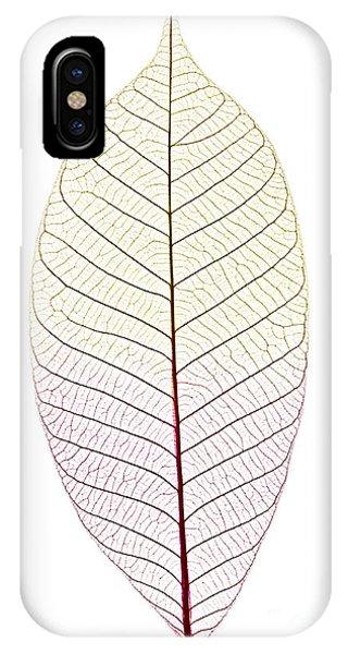 Tint iPhone Case - Skeleton Leaf by Elena Elisseeva
