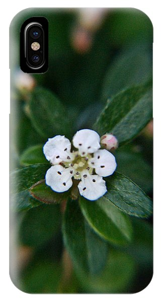 Crossville iPhone X Case - Skull Ghost Flower 1 by Douglas Barnett