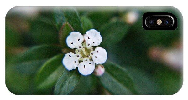 Crossville iPhone X Case - Skull Ghost Flower 2 by Douglas Barnett