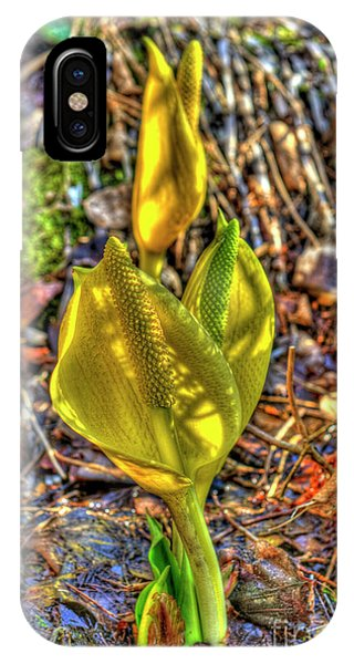 Skunk Cabbage - 2 IPhone Case