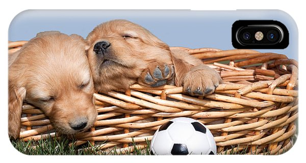 Sleeping Puppies In Basket And Toy Ball IPhone Case