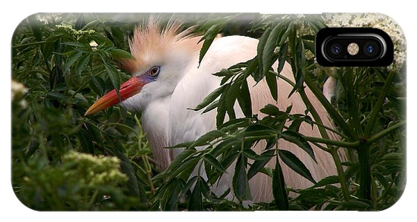 Sleepy Egret In Elderberry IPhone Case