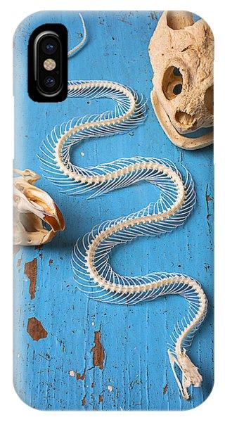 Snake Skeleton And Animal Skulls IPhone Case