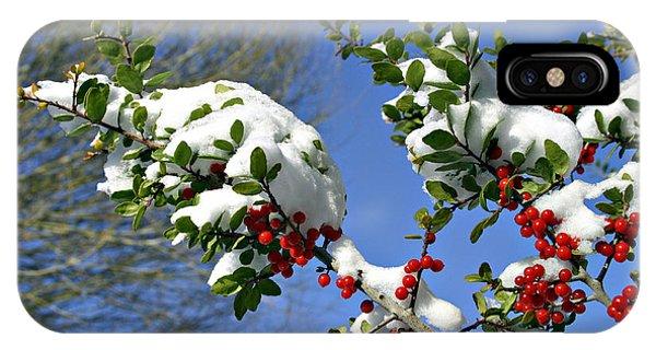 Snow Berrys IPhone Case