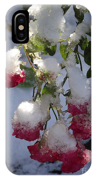 Snow Covered Roses IPhone Case