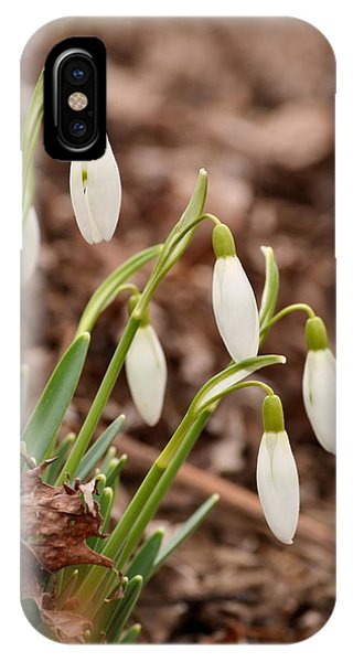 Snow Drops IPhone Case