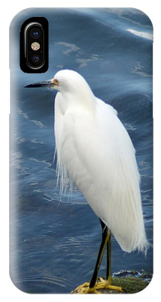 Snowy Egret 1 IPhone Case